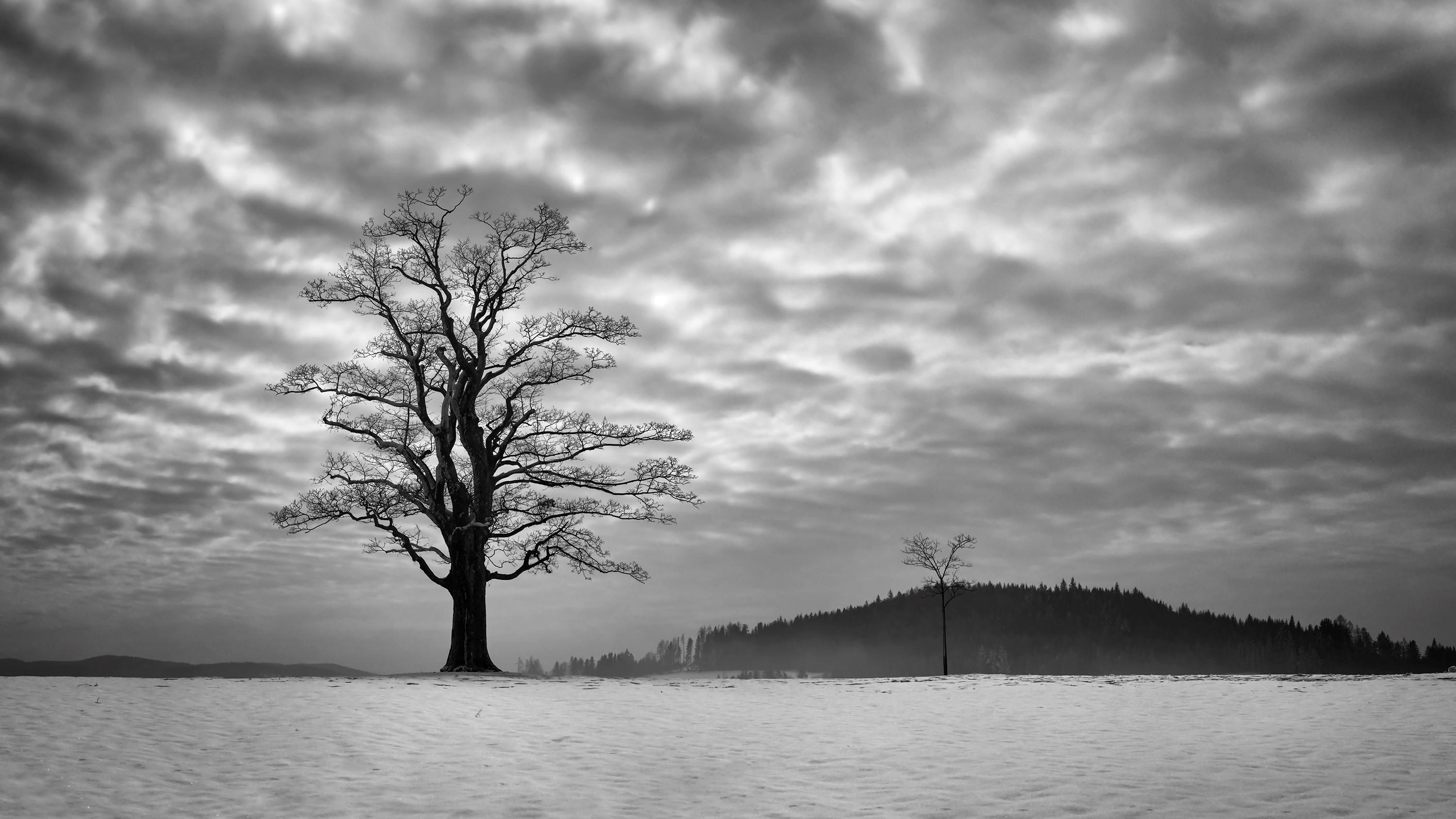 SOM | Fotka mesiaca Nikonblogu – krajinársky december